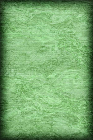 kelly: Photograph of Recycle Kelly Green Striped Pastel Paper, coarse grain, bleached, mottled, vignette grunge texture sample.