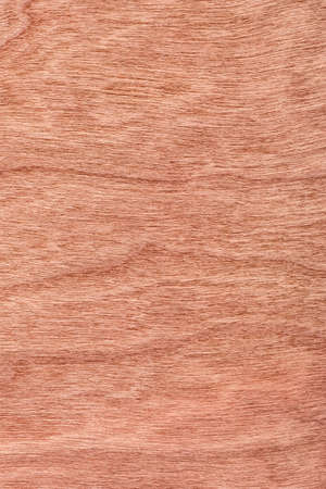 veneer: Photograph of Reddish-brown Cherry Wood Veneer grunge texture sample.