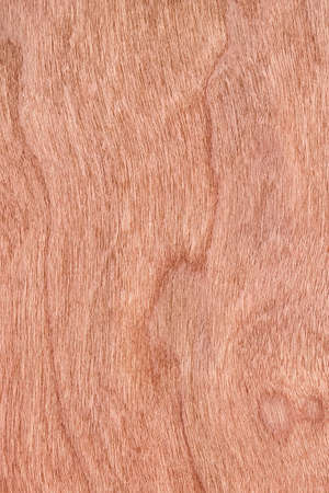 cherry hardwood: Photograph of Reddish-brown Cherry Wood Veneer grunge texture sample.