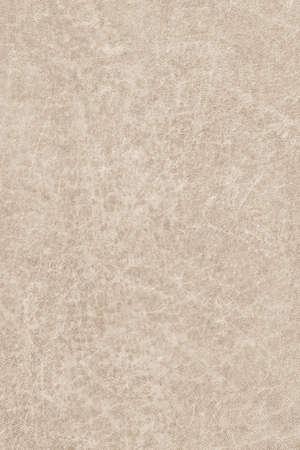 vellum: Photograph of old, Beige Animal Skin Vellum, coarse grained, grunge texture.