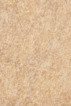 vellum: Photograph of old, Yellow-ocher Animal Skin Vellum, coarse grained, grunge texture.
