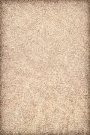 vellum: Photograph of old, Beige Animal Skin Vellum, coarse grained, vignette grunge texture. Stock Photo