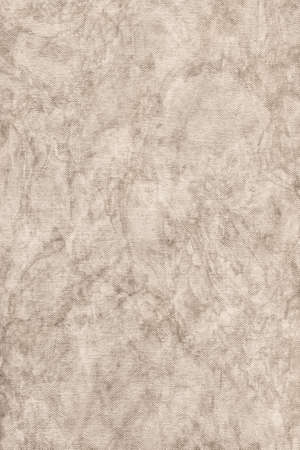 mottled: Photograph of coarse grain, Acrylic primed, Artist Cotton duck canvas, bleached, mottled texture sample. Stock Photo