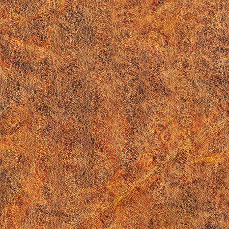 mottled: Photograph of old Brown, weathered, rough, creased, coarse grained, exfoliated, mottled Cowhide grunge texture.