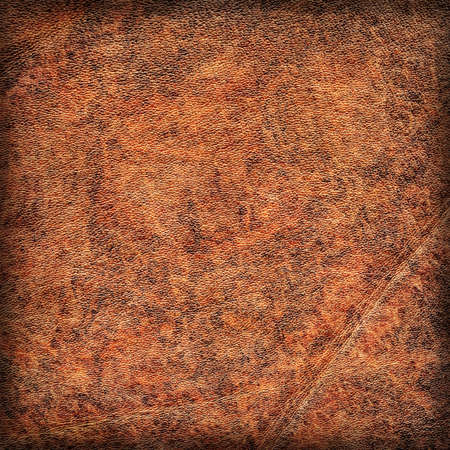 blotted: Photograph of old Brown Cowhide, weathered, rough, creased, coarse grained, exfoliated, blotted, mottled, vignette grunge leather texture.
