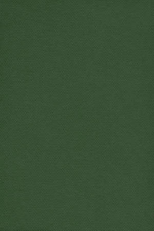 dark pastel green: Photograph of Recycle Dark Kelly Green Pastel Paper, coarse grain, grunge texture sample.