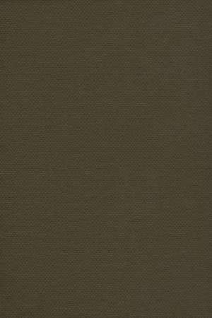 dark pastel green: Photograph of Recycle Dark Olive Green Pastel Paper, coarse grain, grunge texture sample.