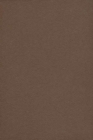 grain grunge: Photograph of Recycle Dark Raw Umber Pastel Paper, coarse grain, grunge texture sample.