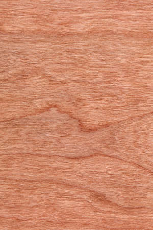 cherry hardwood: Natural Cherry Wood Brownish Red Veneer, grunge texture sample.