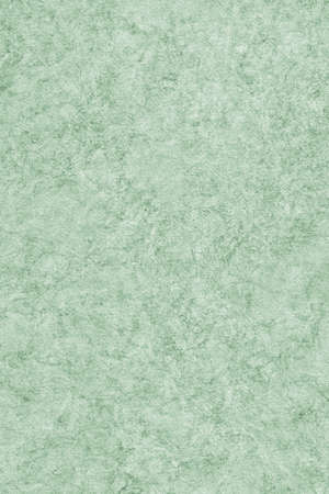interspersed: Photograph of Recycle Watercolor Paper, coarse grain, light Kelly Green, bleached, interspersed with delicate irregular linear pattern, grunge texture.