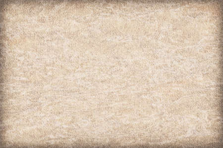 interspersed: Photograph of Recycle Watercolor Paper, coarse grain, light Grayish Beige, bleached, mottled, vignette, interspersed with delicate irregular white linear pattern, grunge texture.