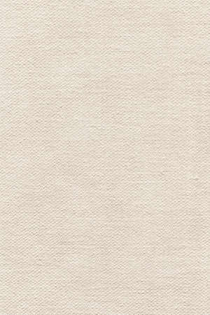 grain grunge: Artist Primed Cotton Duck Canvas, coarse grain grunge texture.