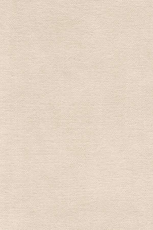 coarse: Artist Primed Cotton Duck Canvas, coarse grain grunge texture.