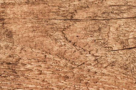 Photograph of old, roughly treated, weathered, cracked, knotted Pine plank grunge texture. photo