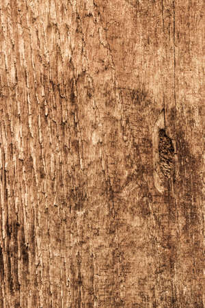 roughly: Photograph of old, roughly treated, weathered, cracked, knotted Pine plank grunge texture.