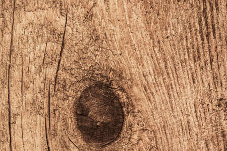 dilapidation: Photograph of old, roughly treated, weathered, cracked, knotted Pine plank grunge texture.