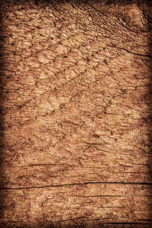 Photograph of old, roughly treated, weathered, cracked, knotted Pine plank, mottled, stained, vignette grunge texture. photo