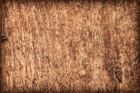 treated: Photograph of old, roughly treated, weathered, cracked, knotted Pine plank, mottled, stained, vignette grunge texture.