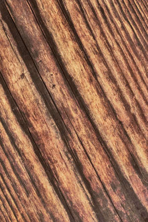 Photograph of old, roughly treated, weathered, cracked, rotten, knotted Pine plank grunge texture. photo