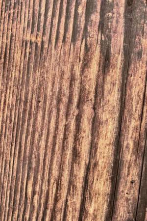 dilapidation: Photograph of old, roughly treated, weathered, cracked, rotten, knotted Pine plank grunge texture. Stock Photo