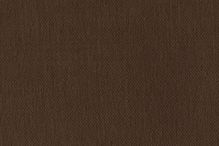 umber: Photograph of Artist Raw Umber Primed Cotton Duck Canvas, coarse grunge texture.