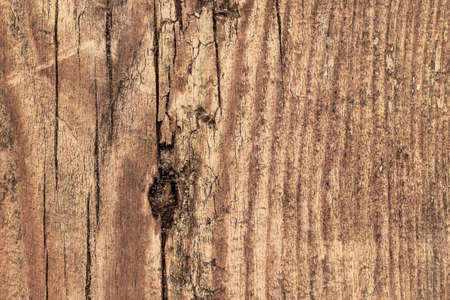 roughly: Photograph of an old, obsolete, roughly treated, weathered, cracked, knotted Pine plank grunge texture. Stock Photo