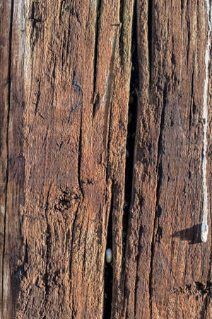balk: Bituminous rough surface texture of an old weathered, rotten, cracked Square Timber Bollard, made of obsolete, scrapped Railroad Cross Tie Timber, with bird droppings traces. Stock Photo