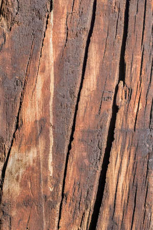 logging railway: Bituminous surface texture of an old weathered, rotten, cracked Square Timber Bollard, made of obsolete, scrapped Railroad Cross Tie Timber.