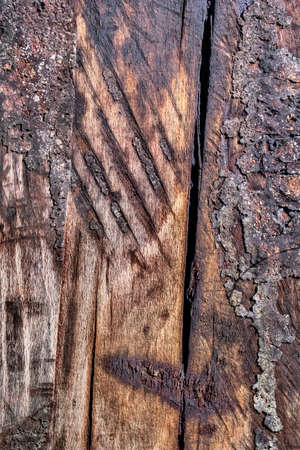 scorched: Bituminous, rough, scorched surface texture of an old weathered, rotten, cracked Square Timber Bollard, made of obsolete, scrapped Railroad Cross Tie Timber, with traces of ash, soot and tar.