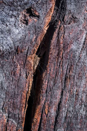 railroad tie: Bituminous surface texture of an old weathered, rotten, cracked Square Timber Bollard, made of obsolete, scrapped Railroad Cross Tie Timber.