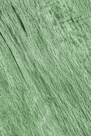 kelly: Photograph of old Kelly Green Stained Beech wood Cutting Board grunge surface texture.