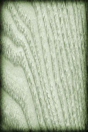 maple wood texture: Maple Wood Veneer, Bleached and Stained Pale Kelly Green Vignette Grunge Texture. Stock Photo