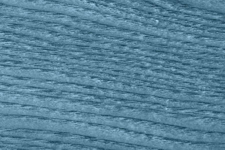 maple wood texture: Maple Wood Veneer, Bleached and Stained Marine Blue Grunge Texture. Stock Photo
