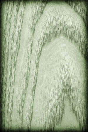 kelly: Maple Wood Veneer, Bleached and Stained Pale Kelly Green Vignette Grunge Texture. Stock Photo