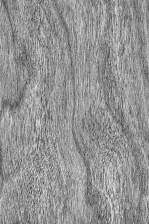 cherry hardwood: Natural Cherry Wood Veneer Bleached Gray Grunge Texture Sample.