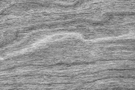 shellac: Natural Cherry Wood Veneer Bleached Gray Grunge Texture Sample.