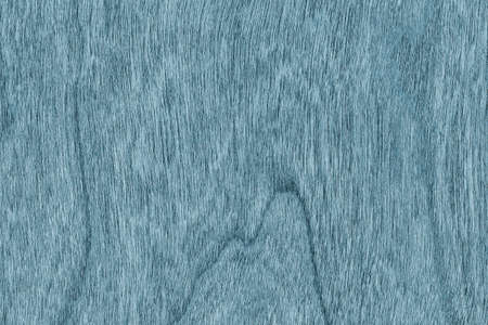 shellac: Natural Cherry Wood Veneer Bleached and Stained Marine Blue Grunge Texture.