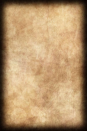 Photograph of Old Natural Animal Skin Parchment, Coarse, Vignette Grunge Texture Sample.