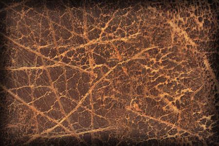 dilapidation: Photograph of Old Natural Brown Cowhide, Weathered, Coarse, Creased, Exfoliated, Cracked, Vignette Grunge Texture Sample