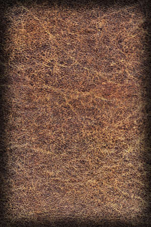 epithelium: Photograph of Old Natural Brown Cowhide, Weathered, Coarse, Creased, Exfoliated, Cracked, Vignette Grunge Texture Sample
