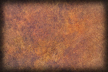dark brown: Photograph of Old Natural Brown Cowhide, Weathered, Coarse, Creased, Exfoliated, Cracked, Vignette Grunge Texture Sample