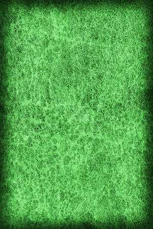 epithelium: Photograph of Old Emerald Green Stained Cowhide, Weathered, Coarse, Creased, Exfoliated, Cracked, Vignette Grunge Texture Sample. Stock Photo