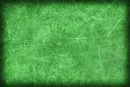 dilapidation: Photograph of Old Emerald Green Stained Cowhide, Weathered, Coarse, Creased, Exfoliated, Cracked, Vignette Grunge Texture Sample. Stock Photo