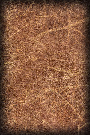 vellum: Photograph of Old Natural Brown Cowhide, Weathered, Coarse, Creased, Exfoliated, Cracked, Vignette Grunge Texture Sample. Stock Photo