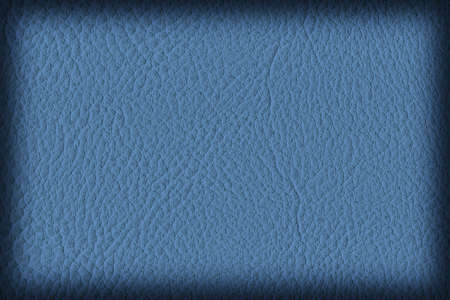 vellum: Photograph of Artificial Leather, Powder Blue, Coarse Vignette Grunge Texture Sample.