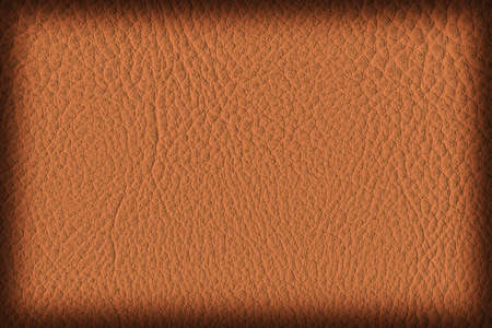 imitation leather: Photograph of Artificial Leather, Red Ocher, Coarse Vignette Grunge Texture Sample.
