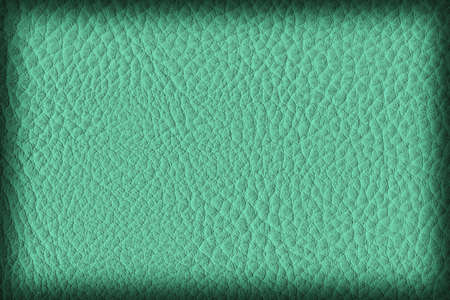 imitation leather: Photograph of Artificial Leather, Vivid Emerald Green, Coarse Vignette Grunge Texture Sample.
