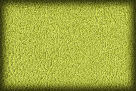 imitation leather: Photograph of Artificial Leather, Lime Yellow, Coarse Vignette Grunge Texture Sample.