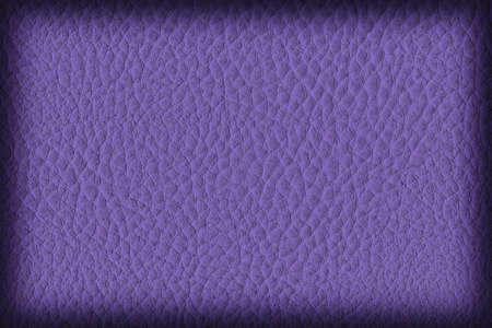 vellum: Photograph of Artificial Leather, Dark Violet, Coarse Vignette Grunge Texture Sample.