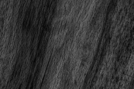 beech wood: Old Beech Wood Bleached and Stained Charcoal Black Grunge Texture Sample.